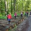 Balancieren_im_Wald
